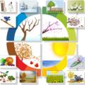 Ročné obdobia - karty s činnosťami a charakteristikami ročných období - ukážka