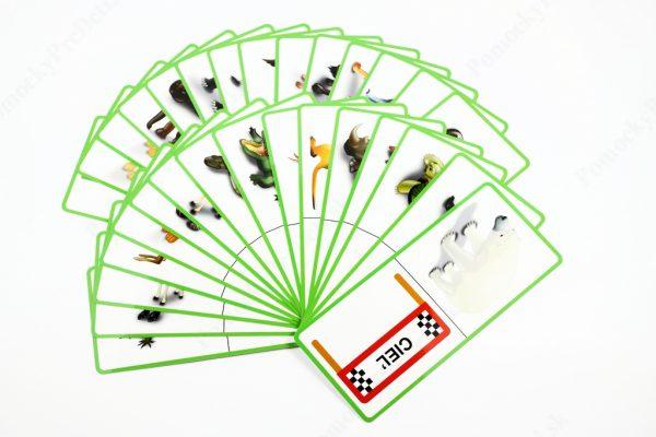Domino - Cudzokrajné zvieratá - náhľad na všetky karty