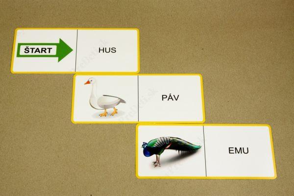 Domino - Vtáky (ukážka vybraných kariet)