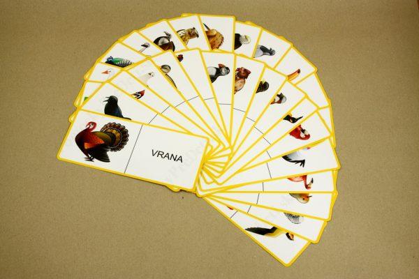 Domino - Vtáky (náhľad na všetky karty)