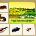Kde žijú zvieratá MAXI - základná karta s vybranými obrázkovými kartami (Zvieratá na poliach, lúkach a pri ľudských obydliach)