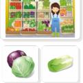 Ovocie a zelenina - priraďovacie karty